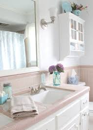 blue and pink bathroom designs. Pink And Blue Bathroom Designs T