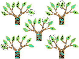 Multivariate Classification With Random Forests For