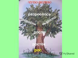 Урок русского языка Проект Семья слов  Реферат по русскому языку 3 класс семья слов