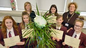 Students create water collecting device - Dorset View