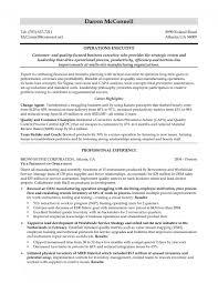 Classy Professional Insurance Broker Resume For Pawn Broker Resume
