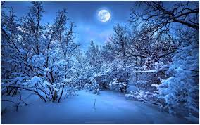 Winter Night Wallpapers - Top Free ...