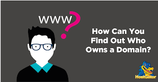 how to find out who the domain owner is