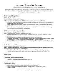 Sample Of Executive Resumes Account Executive Resume Writing Tips Resume Companion