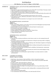 Example Of Accountant Resumes Senior Financial Accountant Resume Samples Velvet Jobs