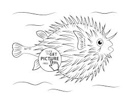 Free Printable Fish Coloring Pages Fishes Coloring Pages Free