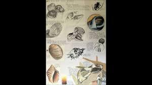 gcse art book background ideas gcse art sketchbook ideas from an experienced teacher of gcse art