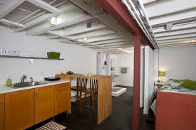 Basement Apartment Design Ideas Style New Inspiration Design
