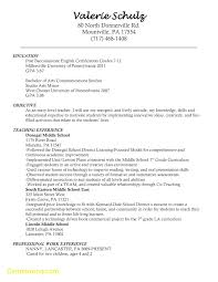 Post Resume Online Beautiful Posting Resume Online Pictures Best Examples And 15
