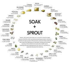 Benefits Of Soaking And Dehydrated Nuts And Seeds Feel