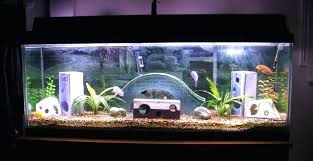 fish tank decorations tank decorations is good best aquarium and with decoration exceptional picture home ideas