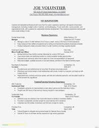 Summary Resume Example Resume Sample Resume Summary Lovely Examples Summaries Of
