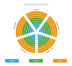 How To Find Out Fat Percentage Tanita Scales Understanding Your Measurements Tanita