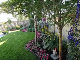 Good Trees For Backyard  Home Decorating Interior Design Bath Good Trees For Backyard