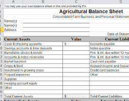 Financial Statements Format Templates Balance Sheet Format Templates In Excel 105431500293 Agricultural