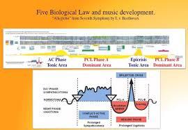 Scientific Chart Of German New Medicine Introduction