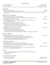 Excellent Microsoft Office Resume Template