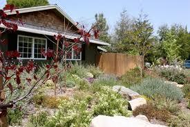 Drought Tolerant Home Landscape