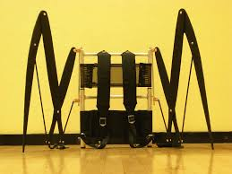 picture of articulated wing framework