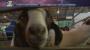 Community fairs and festivals feeling impact of flash flooding