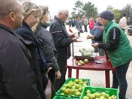 Крым растениеводство и животноводство крым растениеводство и животноводство