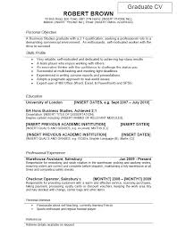 What Should You Put In Your Cv Profile Job Resume Example