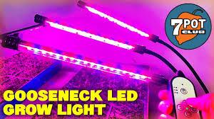 Best Led Grow Light For Peppers 2015 Gooseneck Led Grow Lights For Indoor Hot Pepper Seedlings