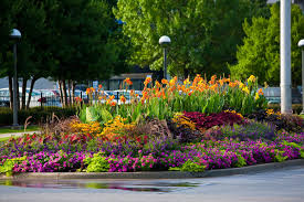 Small Picture Exellent Small Flower Garden Ideas Pictures Beautiful For Front