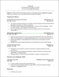 Developer Resume
