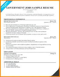 professional resume writing tips resume writing tips for government jobs resumes federal