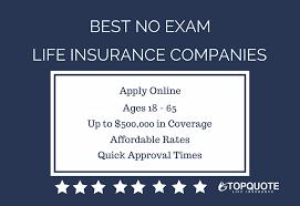 Term Life Insurance Quotes No Exam Custom Download Term Life Insurance Quotes No Exam Ryancowan Quotes