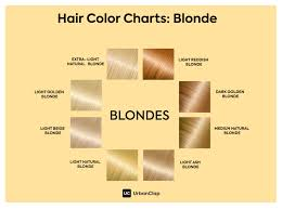 Bleach Hair Time Chart Going Blonde The Dos And Donts Of Hair Bleach