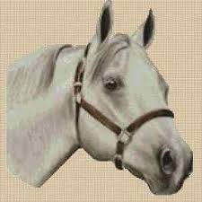 Details About Grey Horse Counted Cross Stitch Chart No 2 192