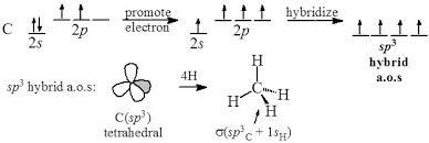 Molecular Hybridization Chart Hybridization