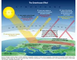 The cycle of the Greenhouse Effect