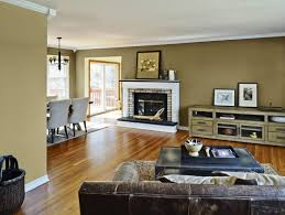 Light Color Combinations For Living Room Colorful Living Room Decorating Inspiration Light Color Pictures