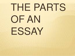 vignette and personal essay edtech 8