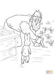 Peter Rabbit Is Spotted By Mr Mcgregor Coloring Page Free