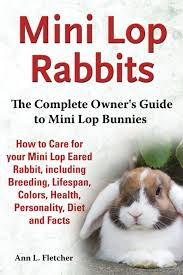 Mini Lop Colour Chart Mini Lop Rabbits The Complete Owners Guide To Mini Lop