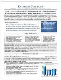 Executive Resume Sample Vp Sales Technology Executive Resume