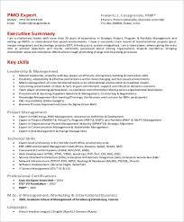8 Sample Executive Summary Resumes Sample Templates