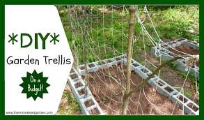 Small Picture DIY Garden Trellis The Homestead Garden The Homestead Garden