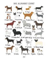 Dog Alphabet Chart Art Print In 2019 Dog Breeds Chart Dog