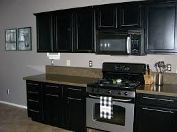 painting kitchen cabinets black distressed of modern 77 cabinet inserts ideas