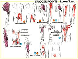 Pain Referral Patterns Best Trigger Point Referral Patterns Balance In Motion Bodywork