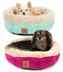 cute dog beds for small dogs  best images collections hd for