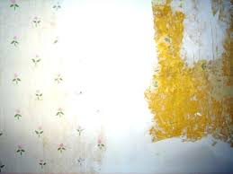 removing wall paper paste get