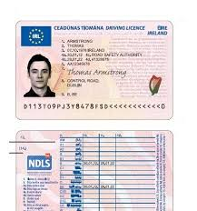 New - Comes Into Effect Driving The European Licence News Portugal