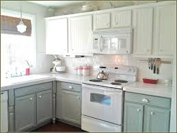 painting inside kitchen cabinets collection with cabinet ideas