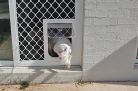 pet door for sliding door bunnings